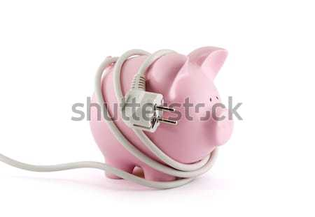 Energy Savings concept. Piggy bank with power plug. Clipping path included.  Stock photo © sqback