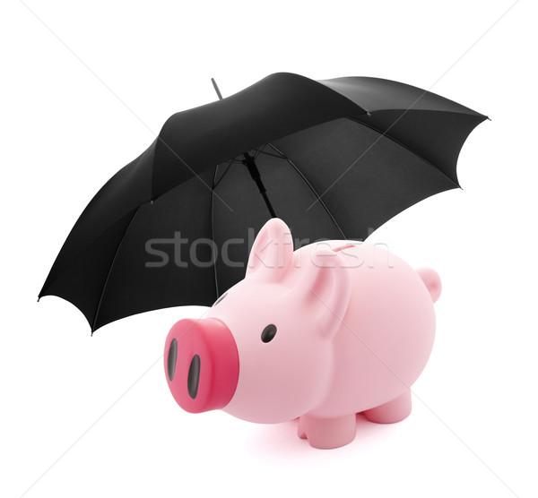 Financieros seguro alcancía paraguas negocios seguridad Foto stock © sqback
