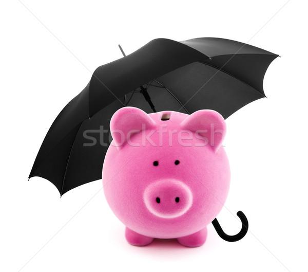 Financial insurance. Piggy bank with umbrella Stock photo © sqback