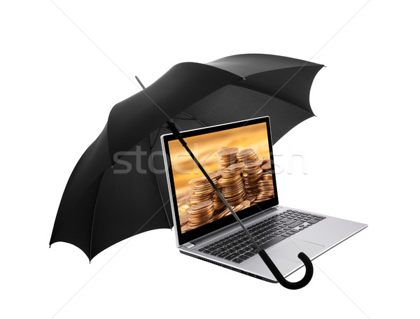 Laptop with golden coins protected by an umbrella  Stock photo © sqback