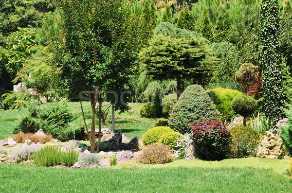 Garden Stock photo © SRNR