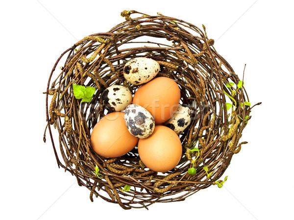 картинки аист несущий яйца к пасхе