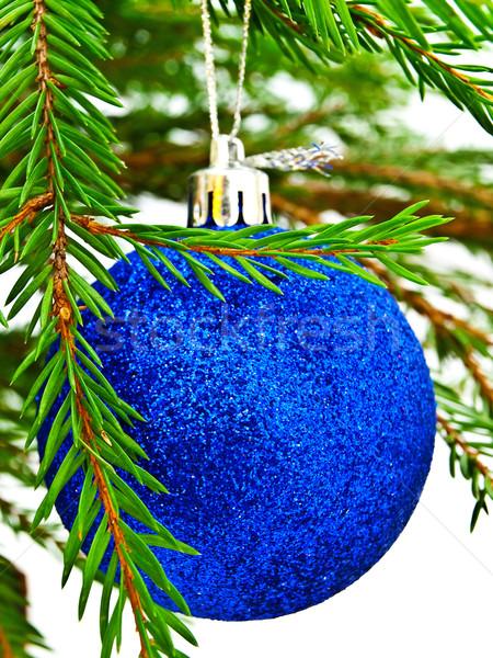 új év játék fényes fenyőfa brunch fehér Stock fotó © SRNR