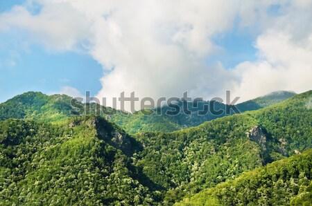 Carpathian Mountains Stock photo © SRNR