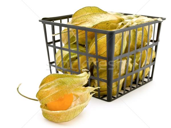 ground-cherry ib basket Stock photo © SRNR
