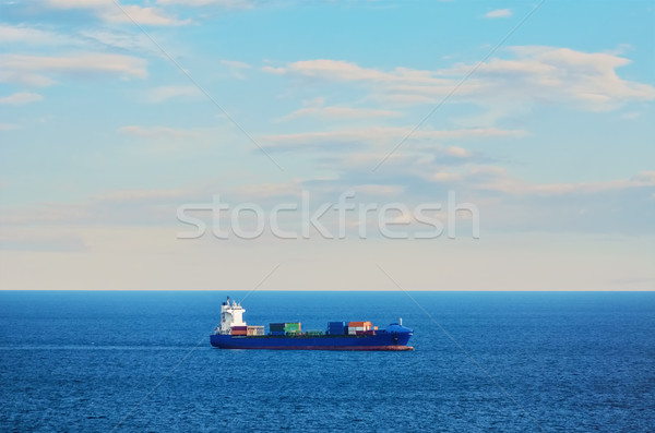 Container Ship in the Sea Stock photo © SRNR