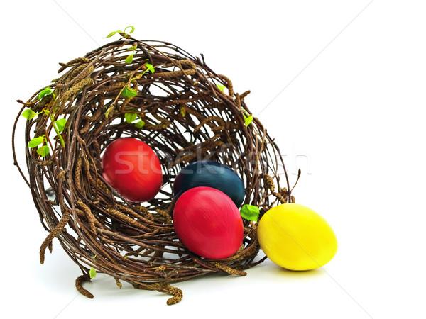 イースター 巣 卵 白 春 ストックフォト © SRNR
