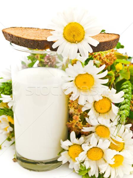 Brot Milch Kamille weiß Blume Küche Stock foto © SRNR