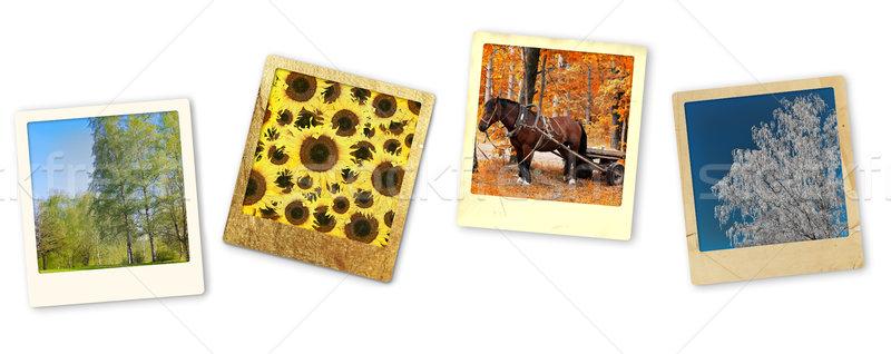 seasons Stock photo © SRNR