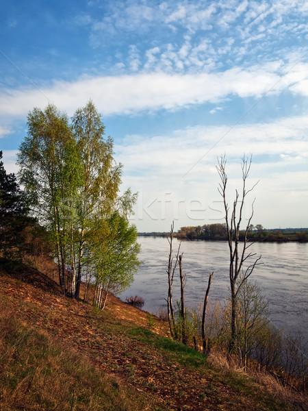берег реки деревья Blue Sky небе дерево облака Сток-фото © SRNR