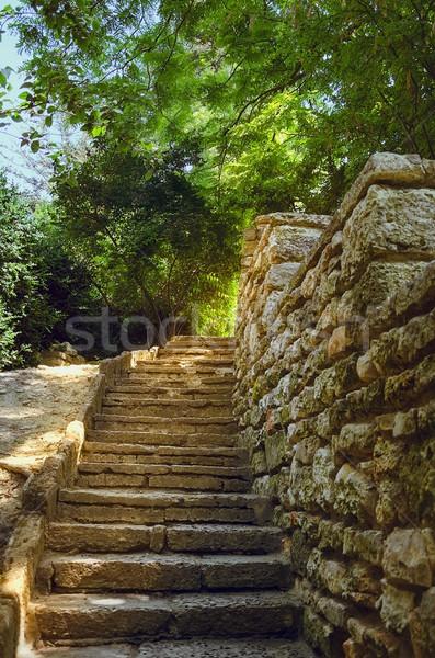 Klatka schodowa kroki mur ściany kamień krok Zdjęcia stock © SRNR