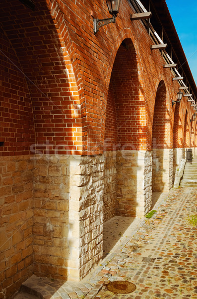 Fortified wall Stock photo © SRNR