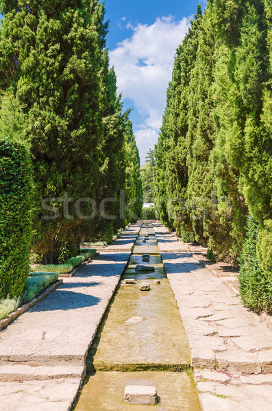 água jardim botânico céu árvore paisagem jardim Foto stock © SRNR