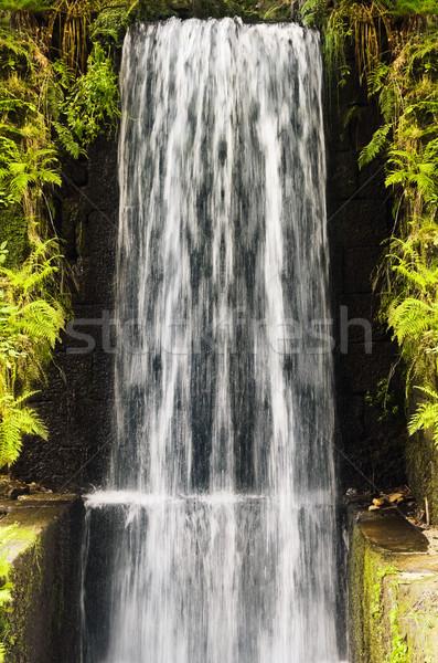 Kaskada wody wysoki ściany wodospad ruchu Zdjęcia stock © SRNR