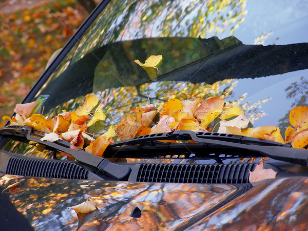 fall on the car Stock photo © SRNR