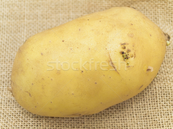 Close up single potato at the brown linen Stock photo © SRNR