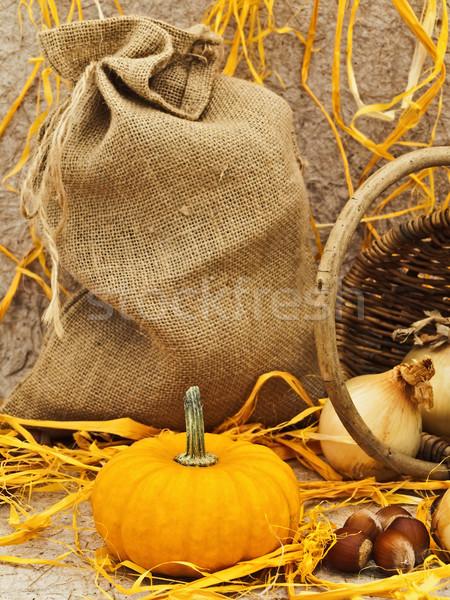 still life with pumpkin Stock photo © SRNR