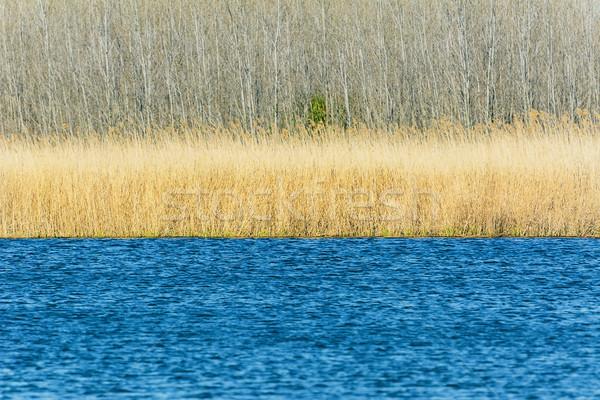 Lake Stock photo © SRNR