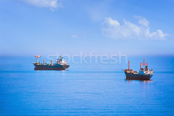 Cargo Ships in the Sea Stock photo © SRNR