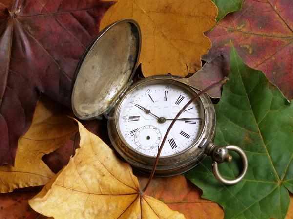 autumn time Stock photo © SRNR