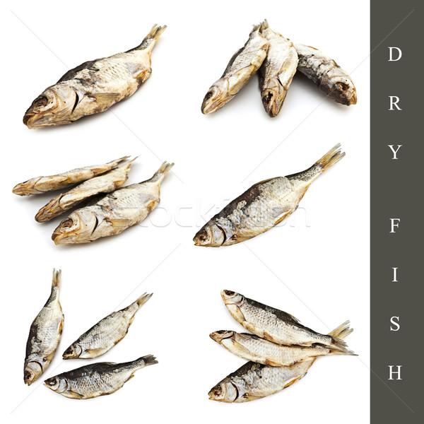dry fish set Stock photo © SRNR