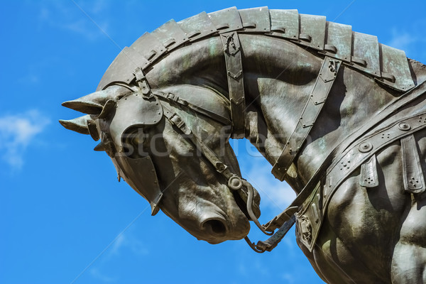 Detail of the Monument Stock photo © SRNR