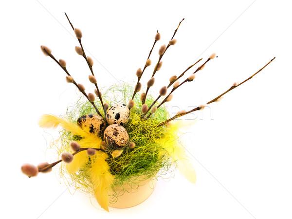 Pasen wilg voorjaar natuur vakantie boeket Stockfoto © SRNR