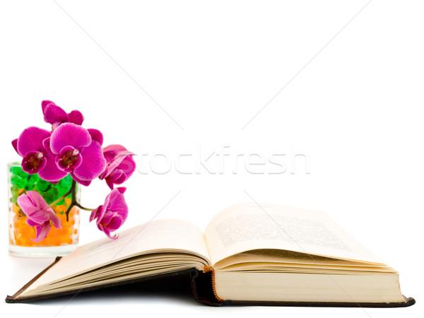 Stock fotó: Nyitott · könyv · orchidea · fehér · virág · tanul · tanul