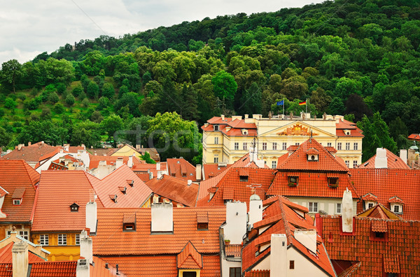 Сток-фото: Прага · плитка · старые · домах · лес
