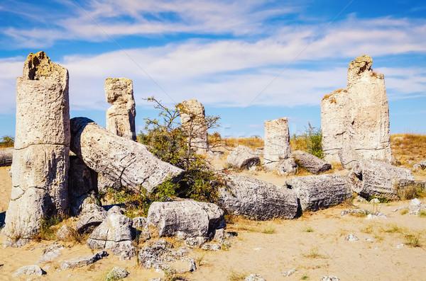 Pedra floresta fabuloso rocha fenómeno natureza Foto stock © SRNR