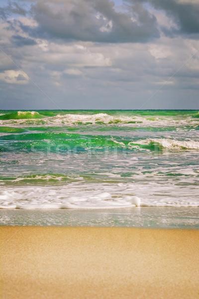 Sea Surf Stock photo © SRNR