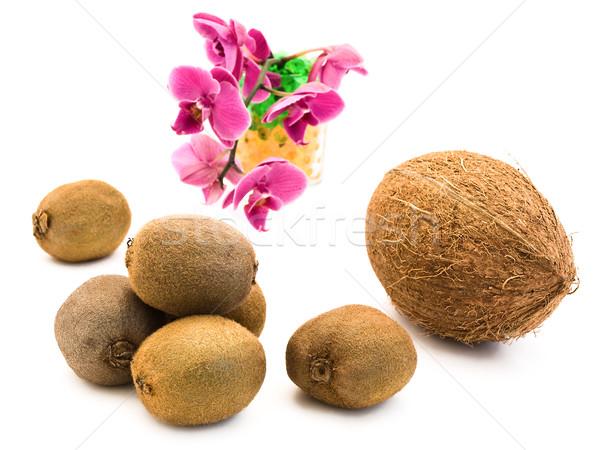 Coconut and Kiwi Stock photo © SRNR