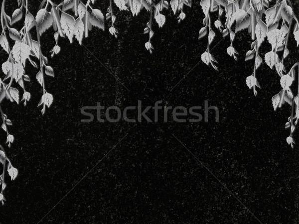 Decorado granito bétula decoração preto lápide Foto stock © SRNR