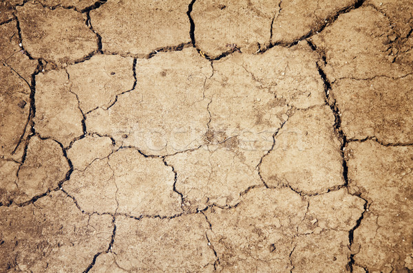 Parched Ground Stock photo © SRNR