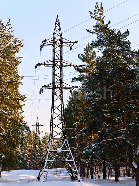 Eletricidade estação inverno floresta céu natureza Foto stock © SRNR