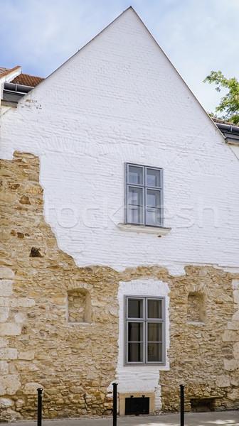 Casa fachada uno casas edificio ciudad Foto stock © SRNR