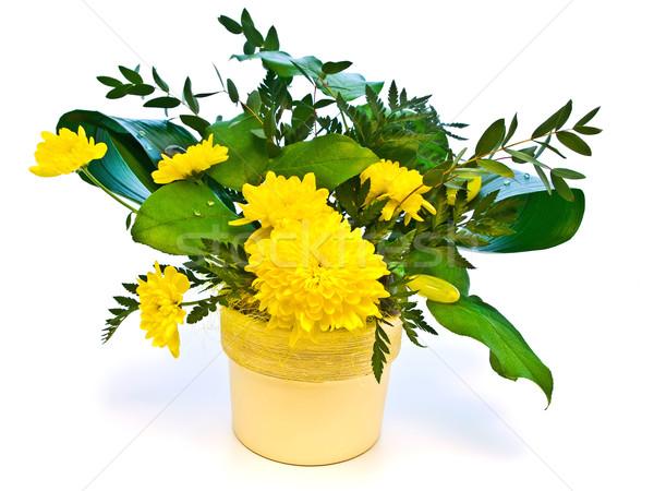 Fiore giallo bouquet foglie verdi bianco fiore Foto d'archivio © SRNR
