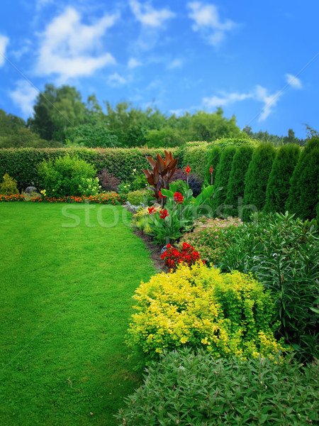 summer flower garden Stock photo © SRNR