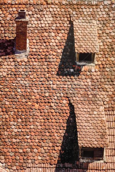 Tiled Roof Stock photo © SRNR