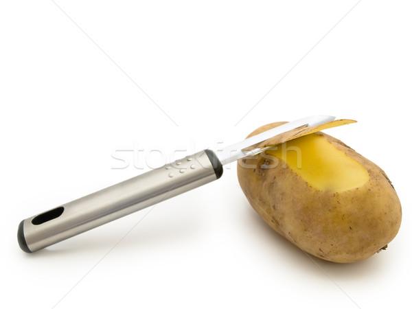 Potato Stock photo © SRNR