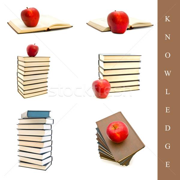 Oktatás szett különböző könyv képek fehér Stock fotó © SRNR