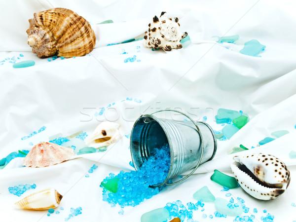 Decorative marine life Stock photo © SRNR