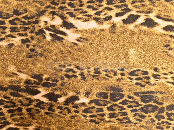 leopard background Stock photo © SRNR