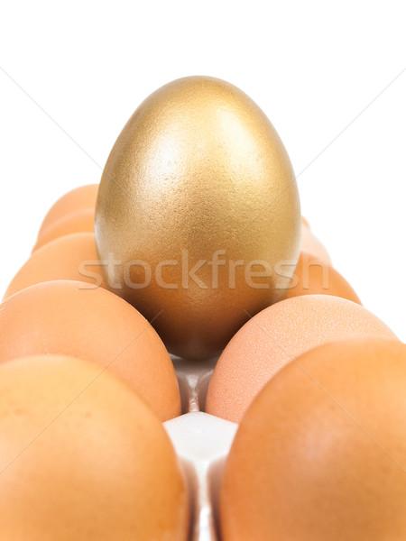Oryginał złote jajka jaj biały żywności sukces Zdjęcia stock © SRNR