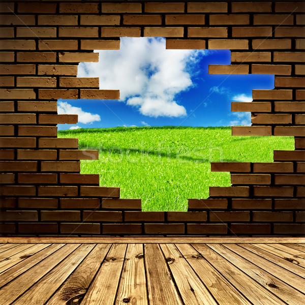Zdjęcia stock: Wolności · lata · dekoracje · otwór · murem · pokój