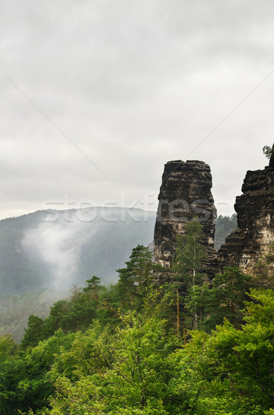 Bohemian Switzerland Stock photo © SRNR