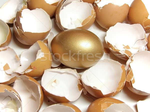 gold and eggshell Stock photo © SRNR