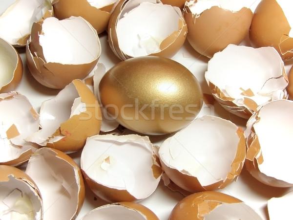 金 卵殻 金の卵 イースター 成功 シェル ストックフォト © SRNR