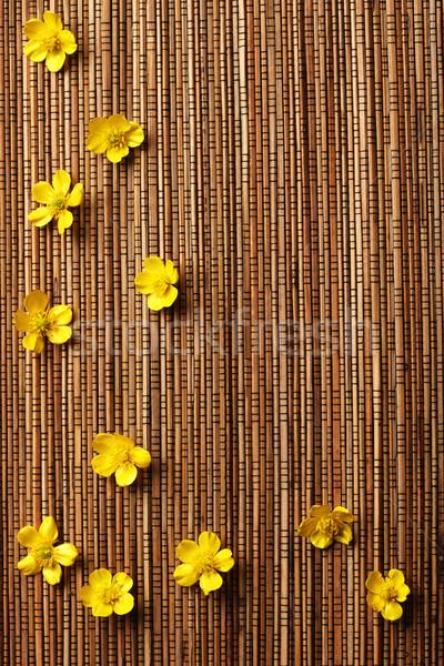 Flores textura abstrato bambu papel de parede planta Foto stock © SSilver
