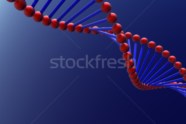 DNA Stock photo © SSilver